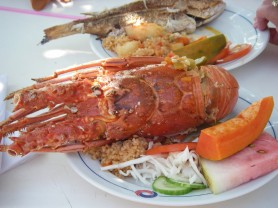 Cubanacan Lobster Dinner Cuba