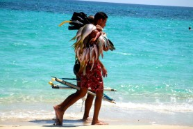 Playas del este spearfishing Cuba