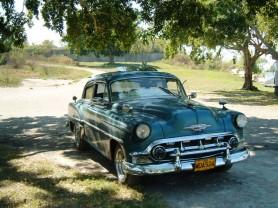 almendron Cuba Havanatur